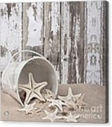 13 Starfish Lane Acrylic Print