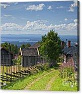 130201p098 Acrylic Print