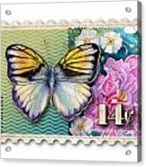 14 Cent Butterfly Stamp Acrylic Print