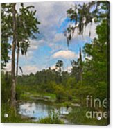 Lowcountry Marsh Acrylic Print