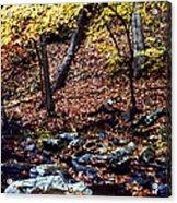 South Branch Quantico Creek Acrylic Print