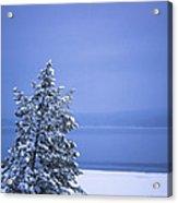 140303a-12 Winter Blues Acrylic Print