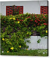 15- Garden Walk Acrylic Print