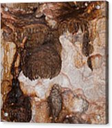Jewel Cave Jewel Cave National Monument Acrylic Print