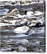 Winter Along Williams River Acrylic Print