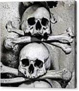 Human Bones. Acrylic Print