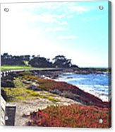 17 Mile Drive Shore Line II Acrylic Print by Barbara Snyder
