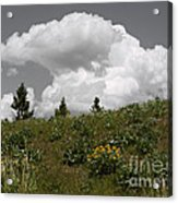 Cloudy With Green Acrylic Print
