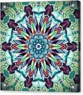 1800 07 Acrylic Print