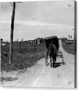1920s 1930s Amish Man Driving Buggy Acrylic Print