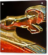 1939 Dodge Business Coupe V8 Hood Ornament Acrylic Print by Jill Reger