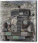 Desert Traveler Acrylic Print