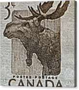 1953 Canada Moose Stamp Acrylic Print