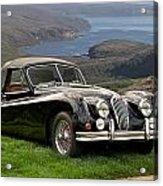 1954 Jaguar Xk140  Acrylic Print