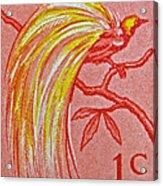 1954 Netherlands New Guinea Paradise Bird Stamp Acrylic Print