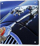 1964 Jaguar Mk2 Saloon Acrylic Print