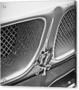 1970 Iso Rivolta Grifo Emblem  -0146bw Acrylic Print