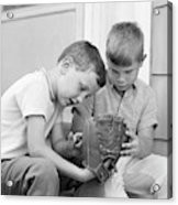 1970s Two Boys Seriously Inspecting New Acrylic Print
