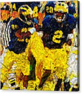 1997 What A Year Acrylic Print