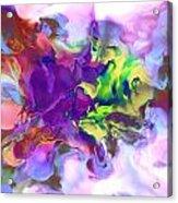 1998007 Acrylic Print