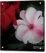 1st National Acrylic Print