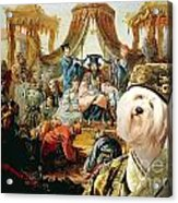 Tibetan Terrier Art Canvas Print Acrylic Print