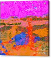 0173 Abstract Thought Acrylic Print