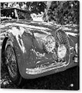 1954 Jaguar Xk 120 Se Ots  Bw Acrylic Print