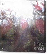 2-20 Manifestations Of Eternity Acrylic Print