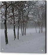 2 2014 Winter Of The Snow Acrylic Print
