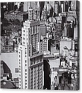 Aerial View Of Sao Paulo Acrylic Print by Ricardo Lisboa