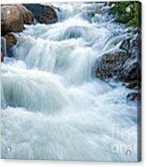 Alluvial Fan Falls On Roaring River In Rocky Mountain National Park Acrylic Print