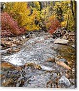 American Fork Canyon Creek In Autumn - Utah Acrylic Print