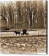 Amish Buggy And Corn Crib Acrylic Print