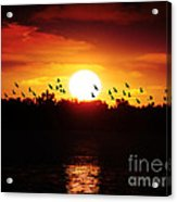 Another Sunset Acrylic Print