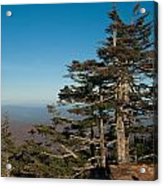 Appalachian Mountains From Mount Mitchell  Acrylic Print