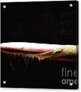 Armchair Observer Acrylic Print