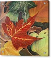 Autumn Leaves In Layers Acrylic Print