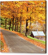 Autumn Road Acrylic Print by Brian Jannsen