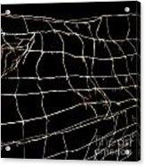 Barbed Wire Acrylic Print by Bernard Jaubert