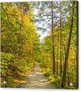 Beautiful Autumn Forest Mountain Stair Path At Sunset Acrylic Print
