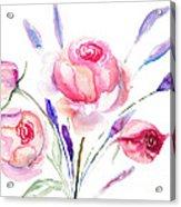 Beautiful Roses Flowers Acrylic Print