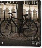 Bicycle Acrylic Print