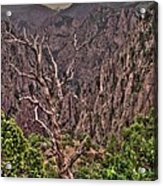 Black Canyon Of The Gunnison Acrylic Print