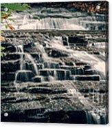 Cascadilla Gorge Acrylic Print