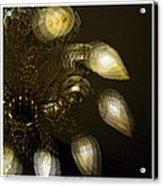 Cascading Light Acrylic Print