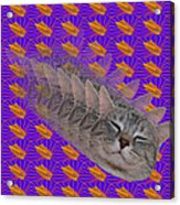 Cat Trip Pop 002 Limited Acrylic Print