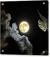 Caught By The Moon Acrylic Print