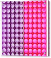 Cell Culture Plate by Natural History Museum, London