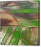 Cereal Fields From The Air Acrylic Print
